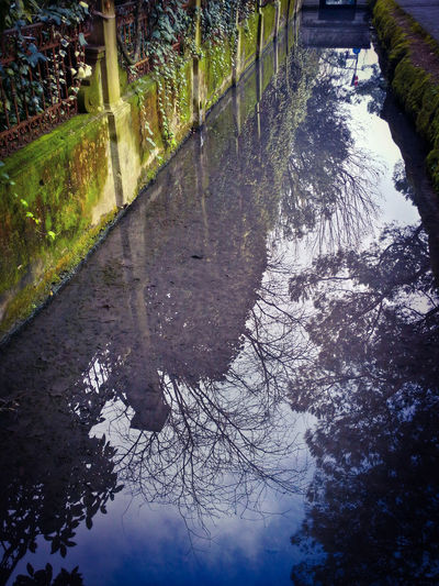 Reflections And Shadows A Time To Reflect Upside Down World Reflection Attraction Nature Trees Canals Fresh Water Treviso Italy Travel Traveling Travel Photography Mobile Photography Art Fineart Mobile Editing
