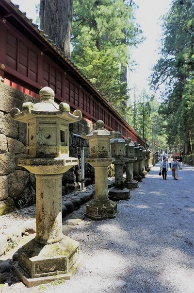 One day in Nikko Along The Way Japanese Garden Japanese Stone Lanterns Japanese Temple Nikko Stone Lantern Tokyo Street Photography Tokyo,Japan Along The Road Day Japan Landscape Outdoors Peaceful Moment Peaceful Moments Peaceful Place Stone Walls Tree Harmonious