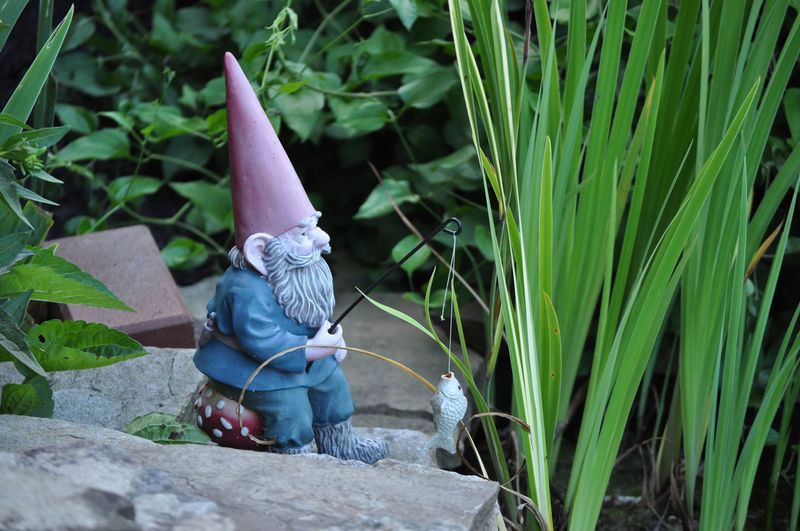 Garden Gnome Statue Fishing in a Pond Garden Nature No People Outdoors Plant Sculpture Statue