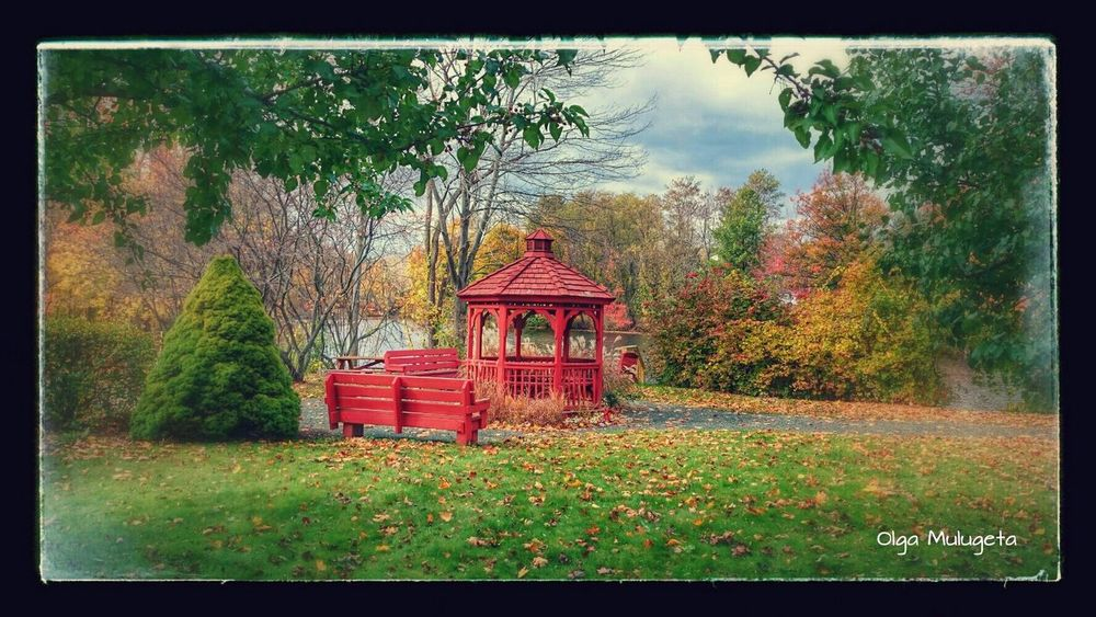 Fall Colors Fall2014 Relaxing at Easthampton Massachussets