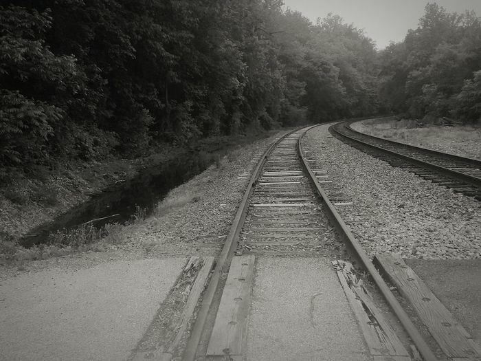 Abandoned Tranquil Scene Train Tracks Tracks Black And White Photography Black & White Mobile Photography Monochrome Still Dreamy Tones Transportation Misty Morning