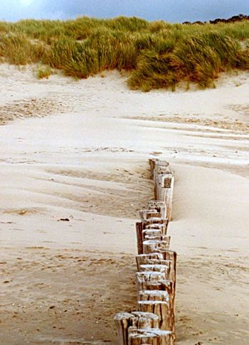 Holzbuhnen an der Nordsee Sand Day No People Beach Outdoors Nature Beauty In Nature Landscape Beachphotography Nordsee Feeling🐚🌾 Northsea Holland❤ Netherlands Holzbuhne Wooden Planks Wood Grass Hafer Strandhafer Strand ♥ Nature Photography Nature_collection Seascape BEACH!  Beach Photography