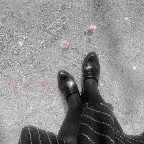 桜少し散っちゃった🌸 Low Section Human Leg Personal Perspective Shoe One Person High Angle View Standing Human Body Part Close-up Real People Outdoors One Woman Only Day Adults Only People Adult