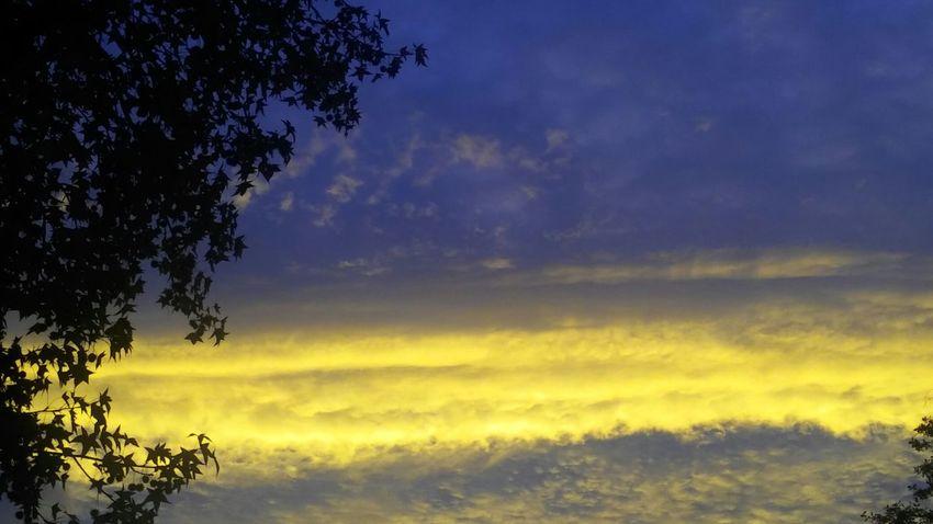 No Edit/no Filter Norcal Sky And Clouds Sunrise Silhouette Amazing Colors Calisky Norcal Sunrise Enjoying Life Smartphonephotography Gods Paint Brush
