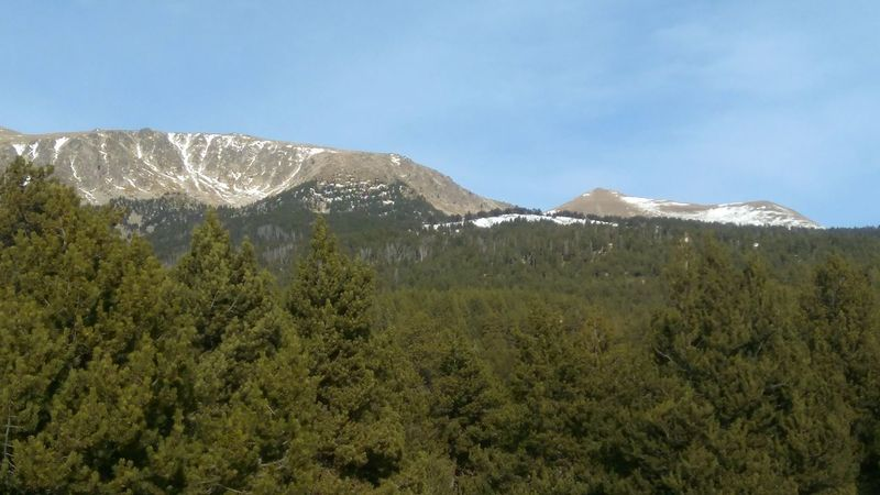 Mountain No People Nature Pinaceae Beauty In Nature Landscape Day Sky Scenics Outdoors Tree Snow Mountain Range Grass Montanas Muntanya Muntains