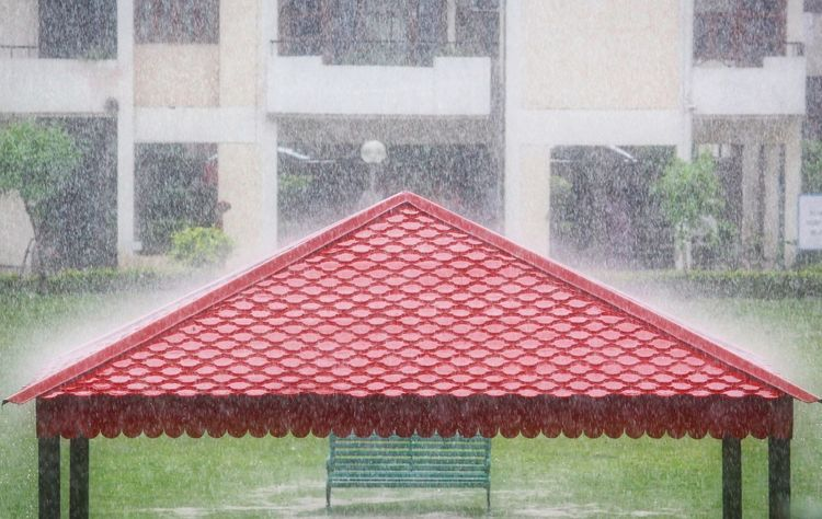 When rain falls. Rainfall Nature Hut Rainy Days Adapted To The City Shelter Bench Monson Drops Breathing Space