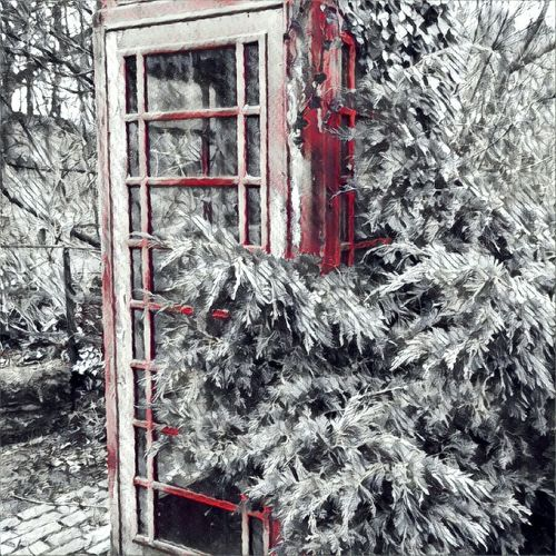 Winter Snow Tree Cold Temperature Christmas No People Outdoors Day Snow Effect Wintertime Cold Winter ❄⛄ Telephone Box