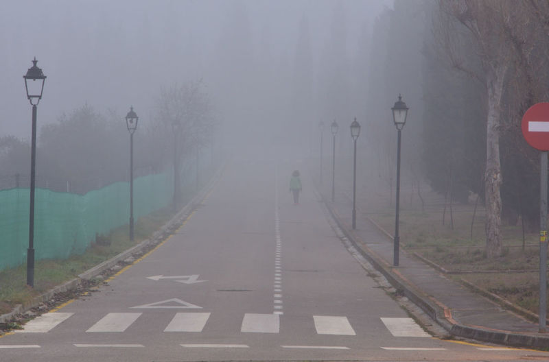 Street lights by road during foggy weather
