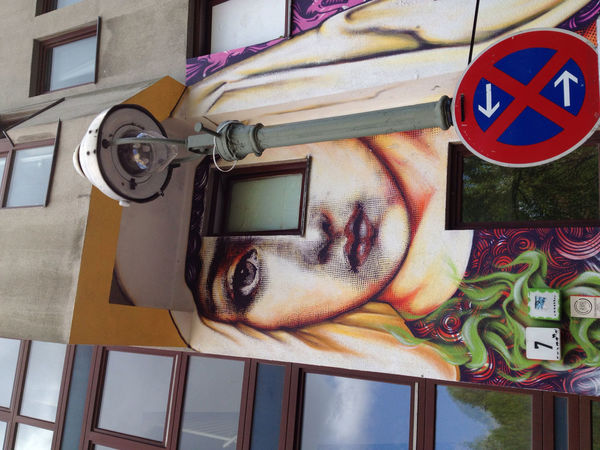 Madonna Face Wall