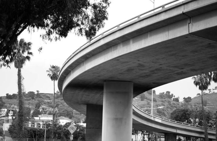 Bridge Curves Taking Photos California Shades Of Grey