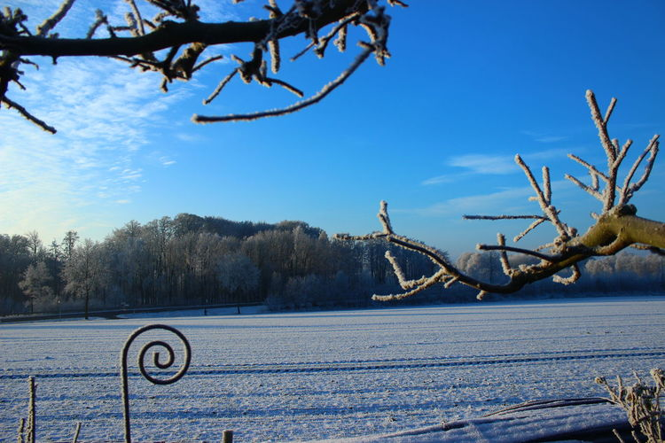 Calm Cold Cold Temperature Nature Non-urban Scene Outdoors This Is Germany Tranquil Scene Winter Landscapes With WhiteWall