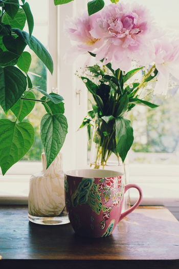 Close-up of potted plants on table against window