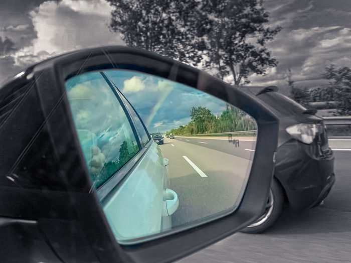 Reflection of trees on side-view mirror of car