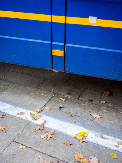 Lines Autumn Blue Close-up Day High Angle View Leaf No People Outdoors Transportation Yellow