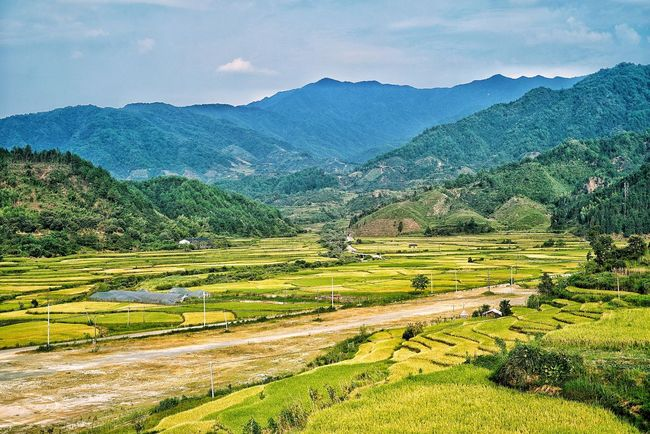China Photos Landscape Mountain Growth Farm Agriculture Nature Tree Rural Scene Sky Outdoors Village Urban Geometry Urban Urban Life Beauty In Nature Scenics No People Tranquil Scene Sunset Rice Paddy Terraced Field Day Streamzoofamily Streamzoofamily Friends The Great Outdoors - 2017 EyeEm Awards