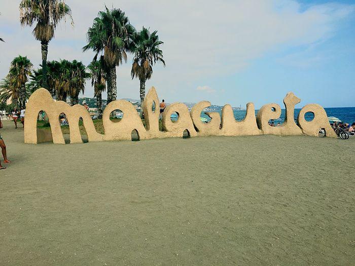 Sea Malagueta
