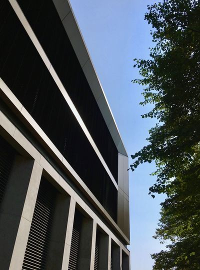 Architectural Feature Architecture Blue Building Exterior Building Story Built Structure City City Life Clear Sky Day Development Façade Geometric Shape High Section Low Angle View Modern No People Office Building Outdoors Place Of Work Sky Skyscraper Tall - High Tree Window