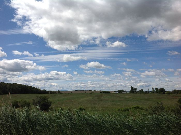 Agriculture Beauty In Nature Blue Calm Cloud Cloud - Sky Cloudy Countryside Day Field Grass Green Color Growth Landscape Nature Non-urban Scene Outdoors Plant Remote Rural Scene Scenics Sky Solitude Tranquil Scene Tranquility