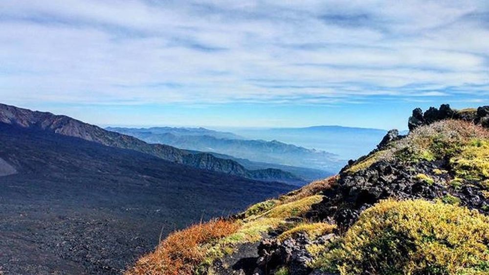 Etna...excursion..panoramic! Italy Sicily Catania Etna Mountain Volcano Excursion Great day Panoramic 180degrees Relax Stopnoises Wild Greatday Nature Nature lovers Downhill Trekking Awesomeplaces Green Trees East Sky Blu