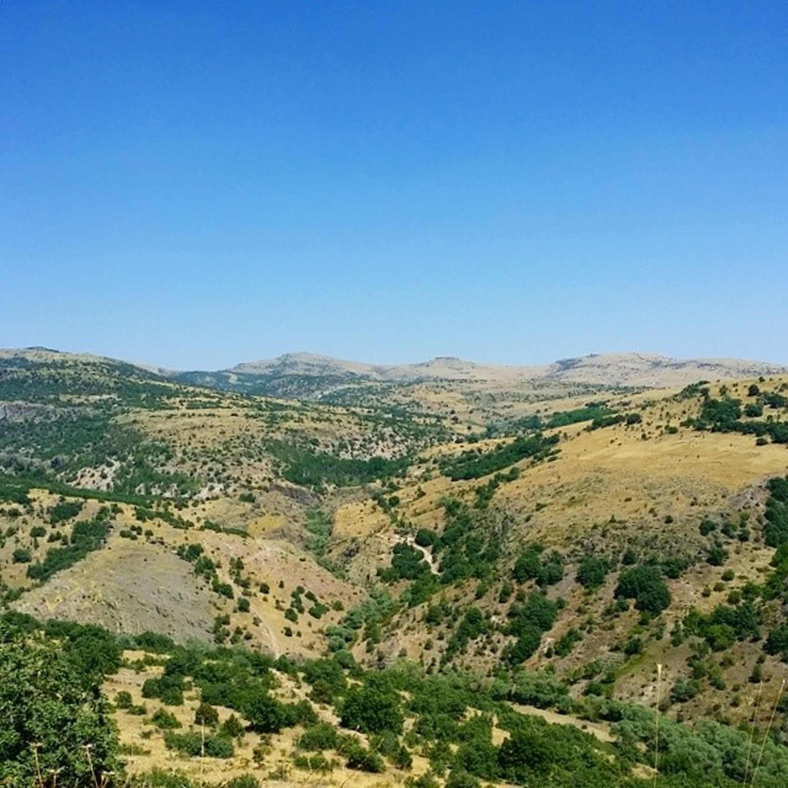 clear sky, blue, copy space, tranquil scene, landscape, tranquility, scenics, mountain, beauty in nature, nature, tree, non-urban scene, idyllic, remote, horizon over land, hill, mountain range, day, high angle view, outdoors