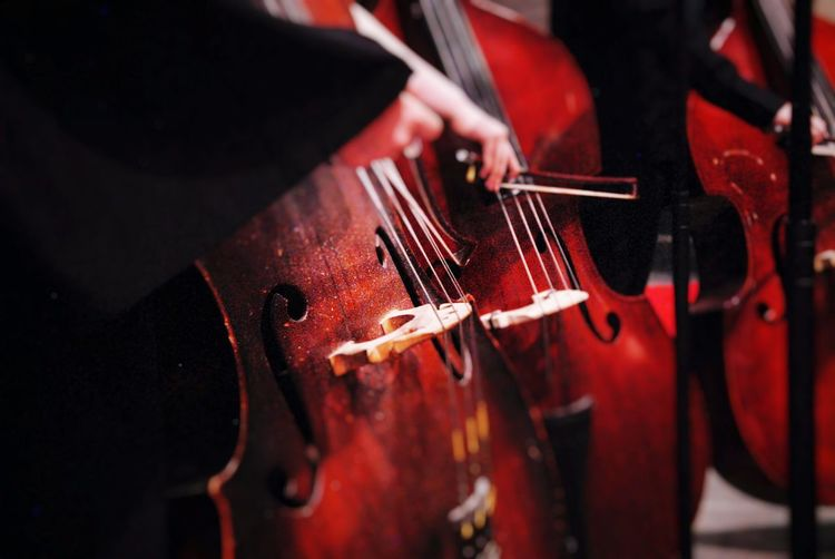 Cropped Image Of Musician Playing Cellos