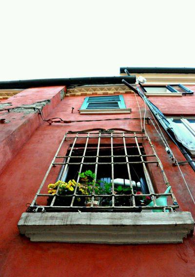 Altre visuali Palazzi Ferrara Italy Streetphotography First Eyeem Photo