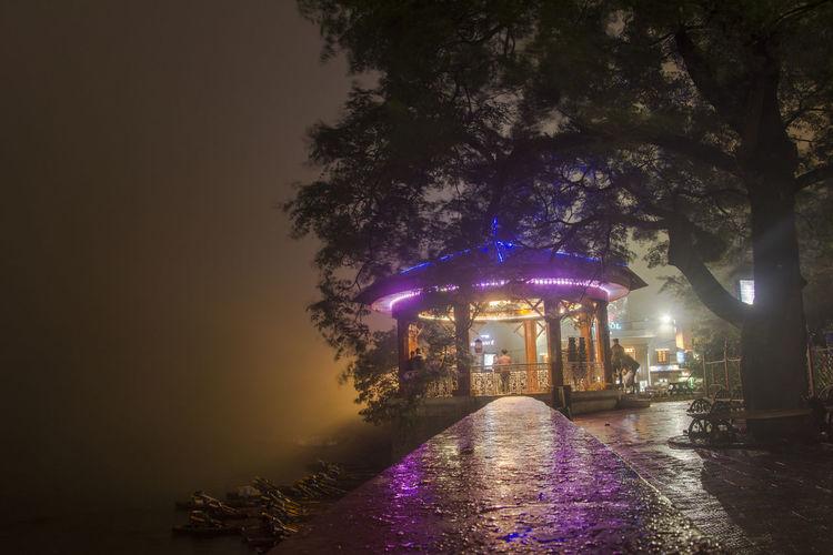 Illuminated trees in city against sky at night
