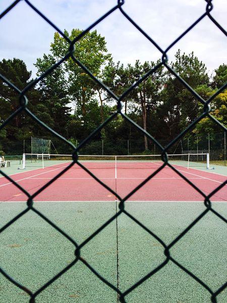 Tennis 🎾 Court Tenniscourt Sport Playground Outdoor Play Equipment Ball Yellow Ball Racket Tennis Shoes Tree Net - Sports Equipment