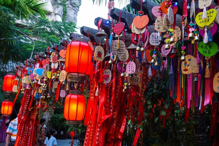 Illuminated lanterns hanging on tree