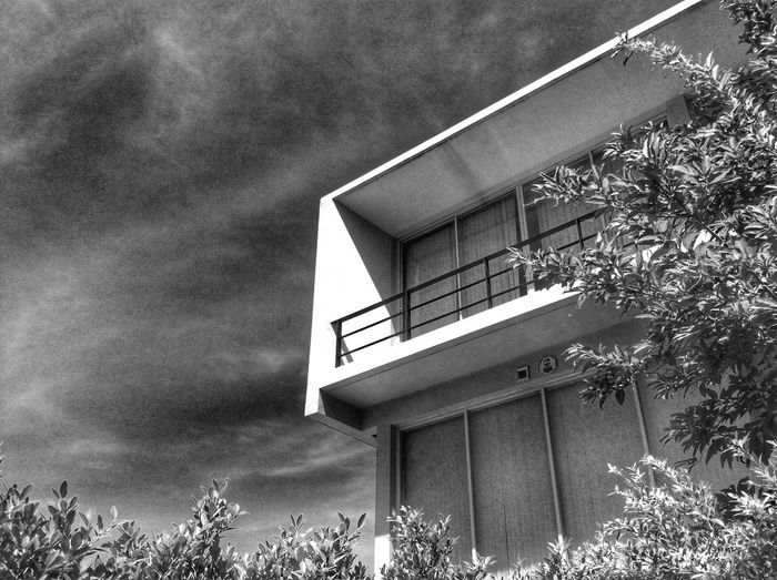 modern architecture in garden black and white clouds and skySky And Clouds Clouds And Sky Outdoors Sky Garden Park Day Building Exterior Modern House Mobilestock Modern Home House Home Architecture Modern Architecture Modern Plant Tree Leaves Leaf Nature Monochrome Monotone Blackandwhite Black And White Black And White Friday