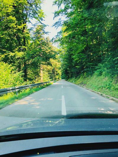 Road Car Nature