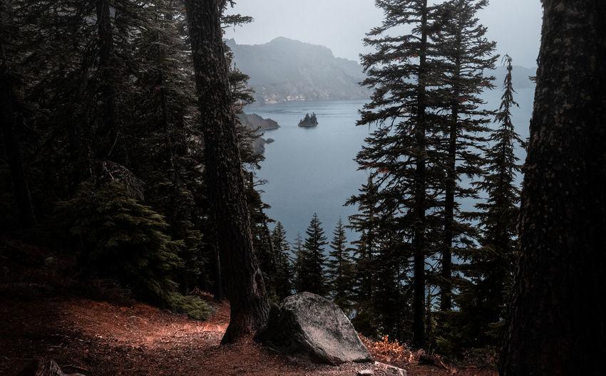 Photo taken in Oregon, United States