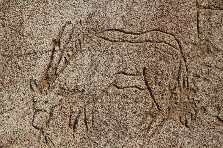 Prehistoric engraving of an oryx antelope