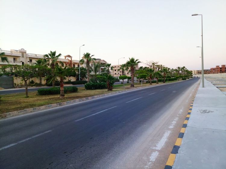 My city Alexandria in egypt City Tree Outdoors Sky No People Day Road First Eyeem Photo