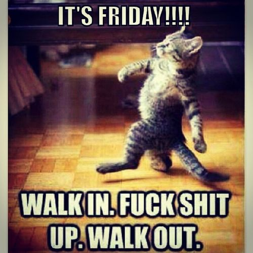 Fridayfeeling @mitchelln @frkhanssen1