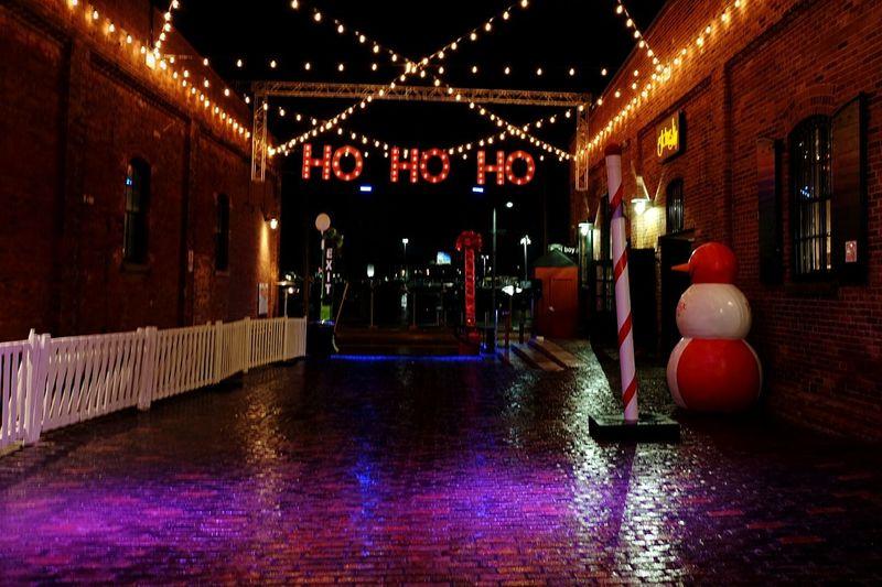 Tis the season Holiday Season Christmas Lights Christmas Decorations Christmastime Season Greetings