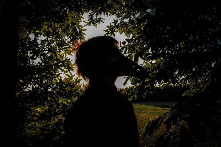 Rear view of silhouette woman standing against trees