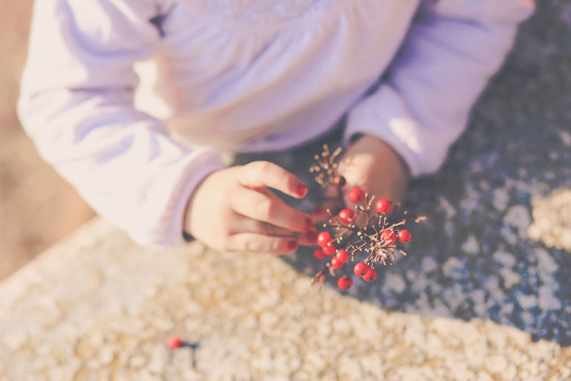 Midsection of girl holding cherries while standing on field