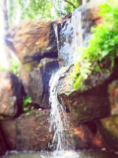 Une petite cascade pour refroidir l'atmosphere de Nantes sur l' Ile De Versaille