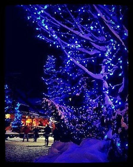 New Year Christmas_tree Holiday Winter People Snow Night Trees Branches_in_snow Drifts снег Снежок  зима сугробы деревья ветви деревья_в_снегу людишки Никополь Вот так выглядят улицы Никополя, за две недели до Нового Года :)