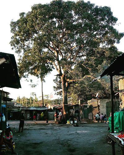 Love the village Tree Village Photooftheday Cheese! Art Taking Photos Hello World Tanzania Daressalaam