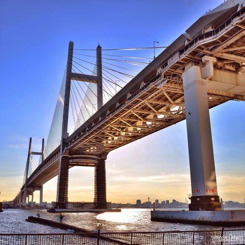 横浜ベイブリッジ 横浜ベイブリッジ Architecture Streetphotography EyeEm Best Shots Eye4photography  Sky Collection Yokohama