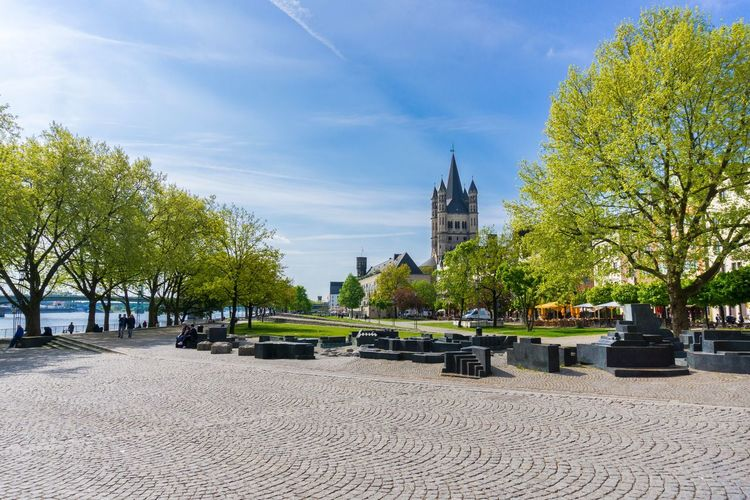 Cologne at the Rhine No People Springtime Blooming Blue Sky Background City City Life Cologne Freshness Green Rhine Spring Tourism Tourist Attraction  Sightseeing Germany Travel Destinations Traveling Tourist Destination Outdoor Trees Nature Concepts Sunny Day Environment