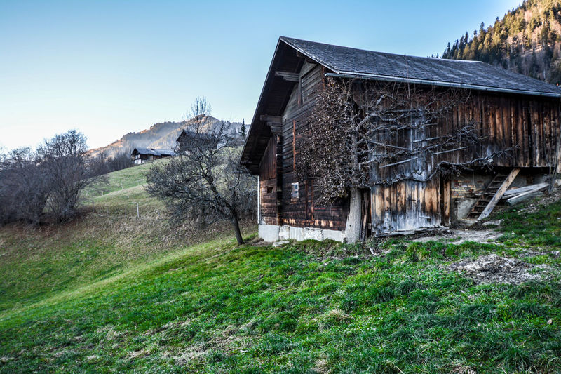 Architecture Built Structure Grass House Lonely House Nature No People Outdoors Rural Scene Saanen Sky Switzerland Switzerland Alps Switzerlandpictures Tree Tree Tree_collection  TreePorn