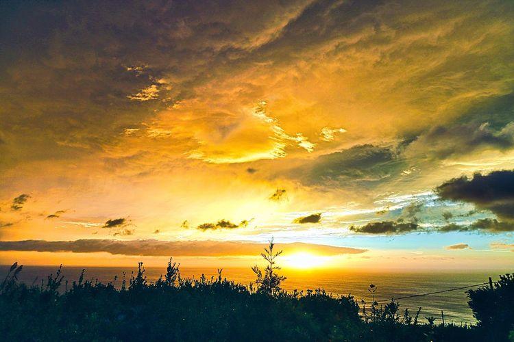 Moody Sunrise,