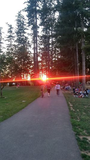 Check This Out Real People Sunset Beauty In Nature Outdoors Grass Nature Tree