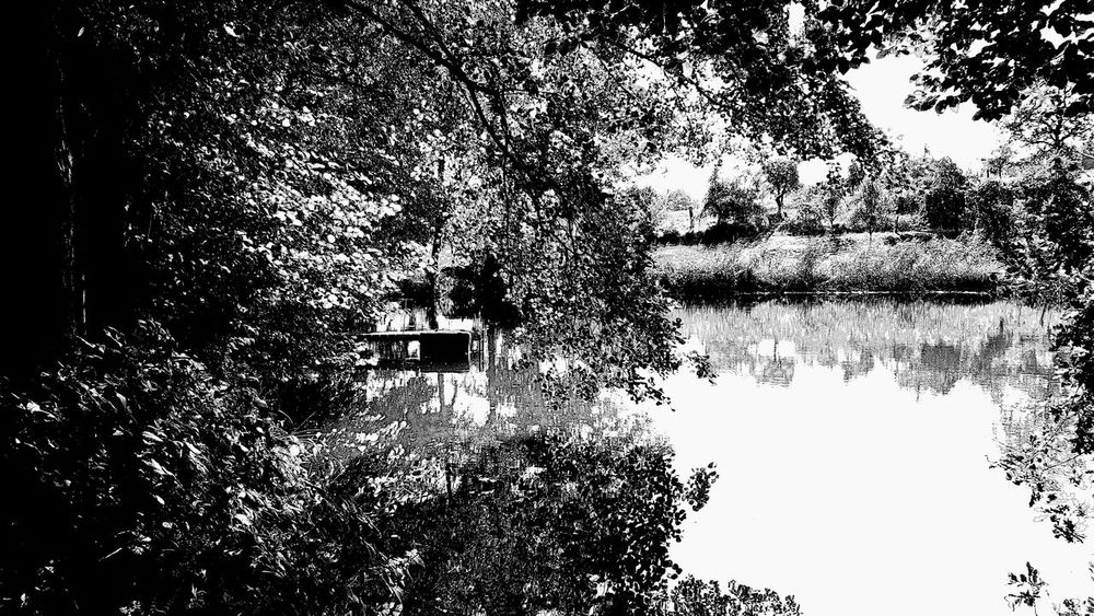 | silent places | Silent Silence Of Nature Silent Moment Silence Place Places Monochrome Monochromatic Monoart Monochrome_life Monochrom Monochromeart Bnw Bnwphotography Bnw_society Bnw_switzerland Bnw_collection Bnw_life Bnw_planet Blackandwhite Blancoynegro Blackandwhitephotography Bnw_lovers Bnw_magazine EyeEm Nature Lover