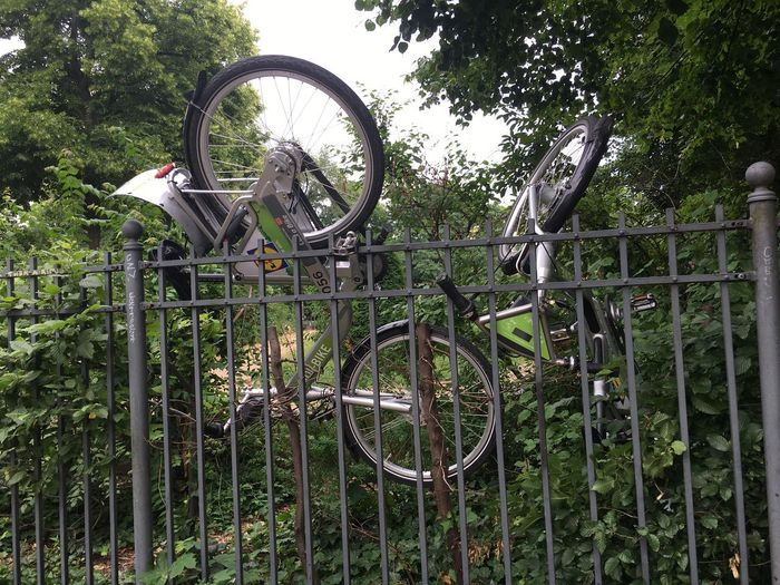Bicycle parked by railing against trees