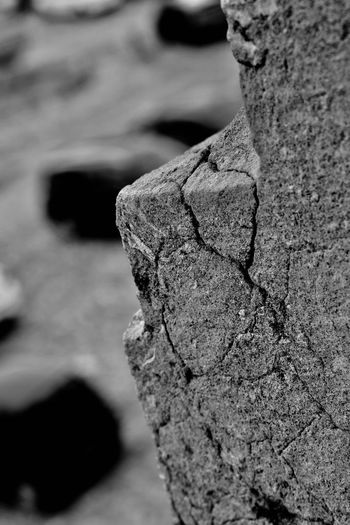 Old Rock Wall Old Old Close-up Focus On Foreground No People Day Textured  Nature Outdoors Rock - Object Selective Focus