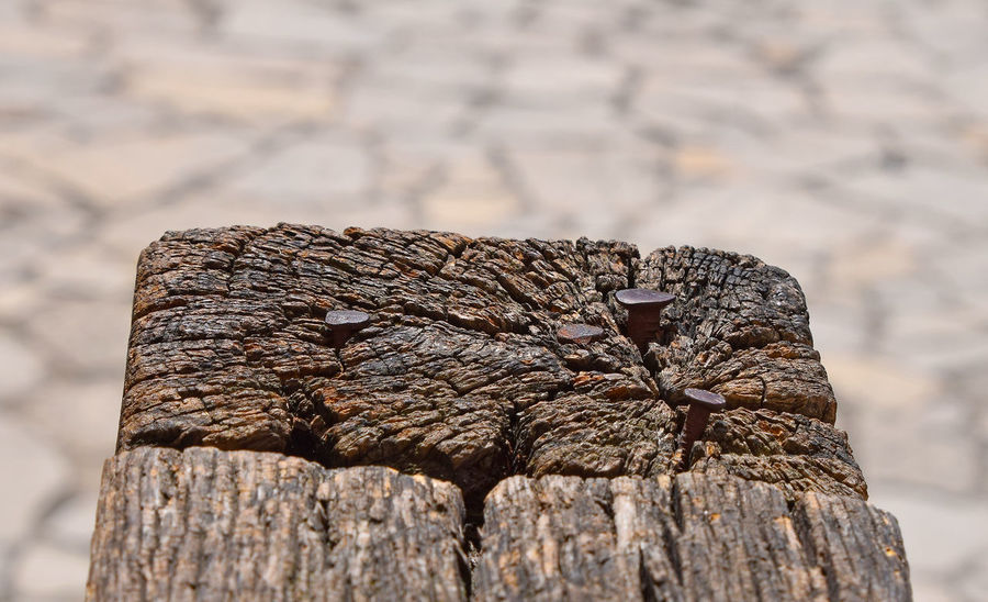 Old metal nails in vintage wooden block over background of stone paved street Antique Backgrounds Brown Close Up Close-up Cracked Craftsmanship  Detail Heritage Nails Natural Pattern Old Paved Rough Selective Focus Stone Pavement Street Textured  Timber Wood Wood - Material Wooden